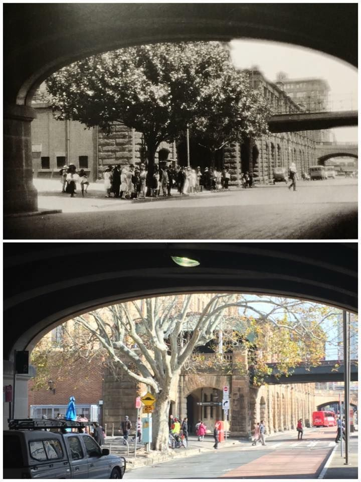 "Eddy Ave at Central Station, 1930s > 2015 (1930s: ""Old Sydney Way Back When""…"