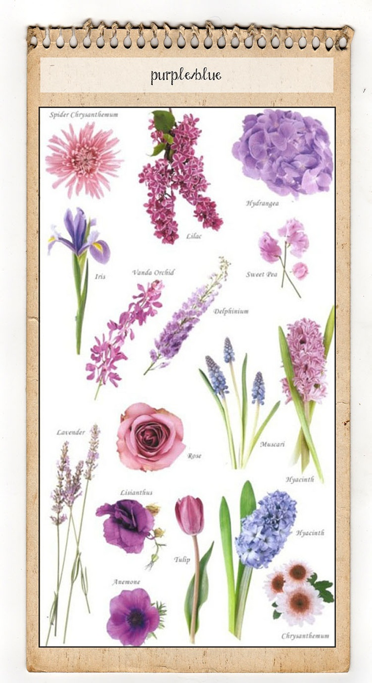 186 best Free Garden Charts images on Pinterest | Flower colors ...