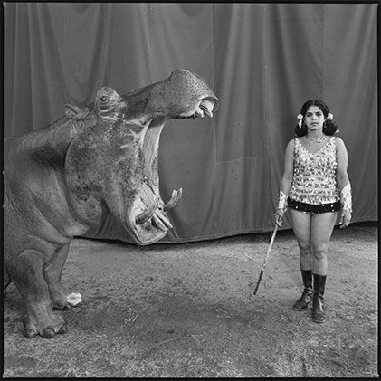 Mary Ellen Mark: Hippopotamus and Performer. Great Rayman Circus, Madras, India, 1989. Stills Gallery, Sydney