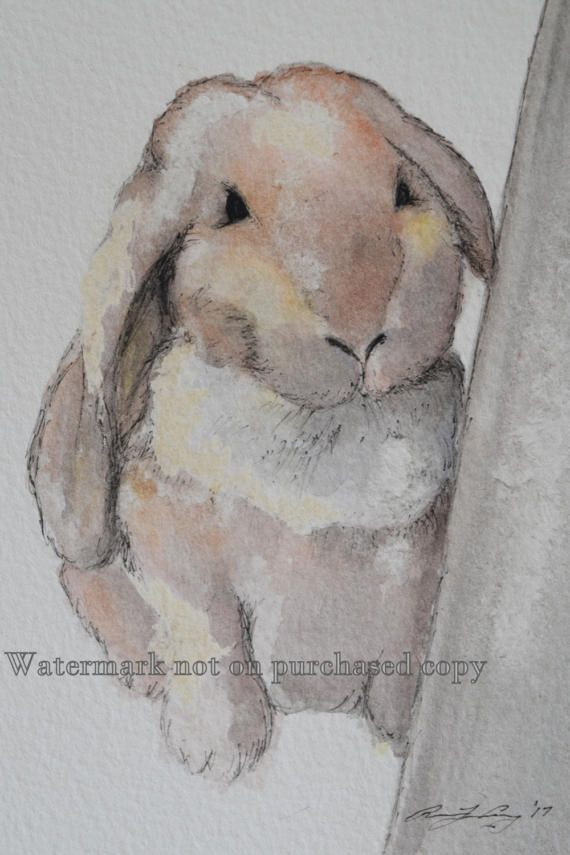 Easter Watercolor Art Rabbit Easter Bunny Fluffy Cute