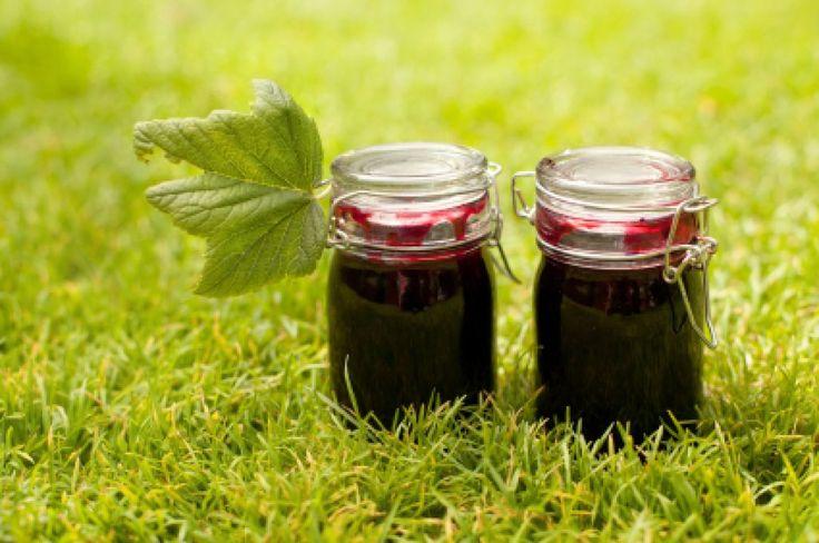 Das Weintraubengelee ist eine wunderbare Alternative zu den herkömmlichen Aufstrichen. Ein fruchtig-süßes Rezept für viele Gelegenheiten.