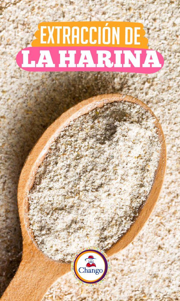 #TipChango No usés una taza medidora para extraer harina de una bolsa. Esto hará que se compacte y que utilcés más de lo que exige la receta.  Empleá una cuchara grande para depositar harina en la taza, formá una pequeña montaña y remové el excedente con un cuchillo.