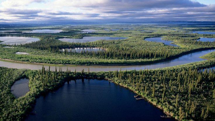 The Mackenzie River in Canada Credit: Wayne Lynch All Canada Photos Getty Images NULL_182f9668a583b1ab.jpg (1400×788)
