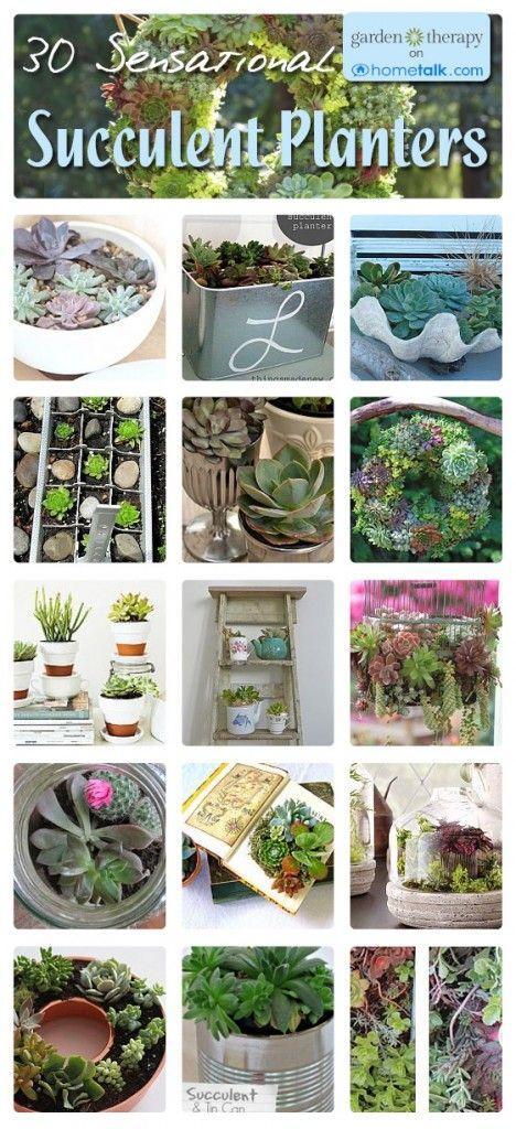 Love succulents <3 You don't need a green thumb!! 30 Sensational Succulent Planters