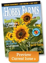 Hobby Farms - learn about SHEEP Breeds for the hobby farm