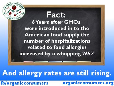 No human trials were ever conducted to see if these genetically engineered proteins were actually safe for animal- and human consumption. And now we have explosive increases in food allergies. This is no coincidence. Learn more: http://www.organicconsumers.org/articles/article_28254.cfm