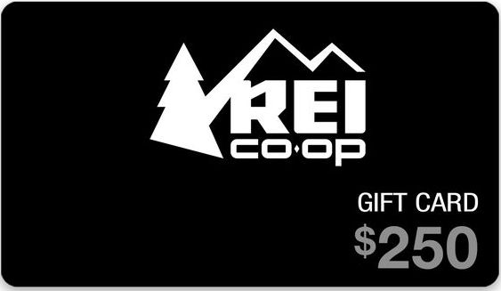 Ellen TV - Win a $250 REI Gift Card - http://sweepstakesden.com/ellen-tv-win-a-250-rei-gift-card/