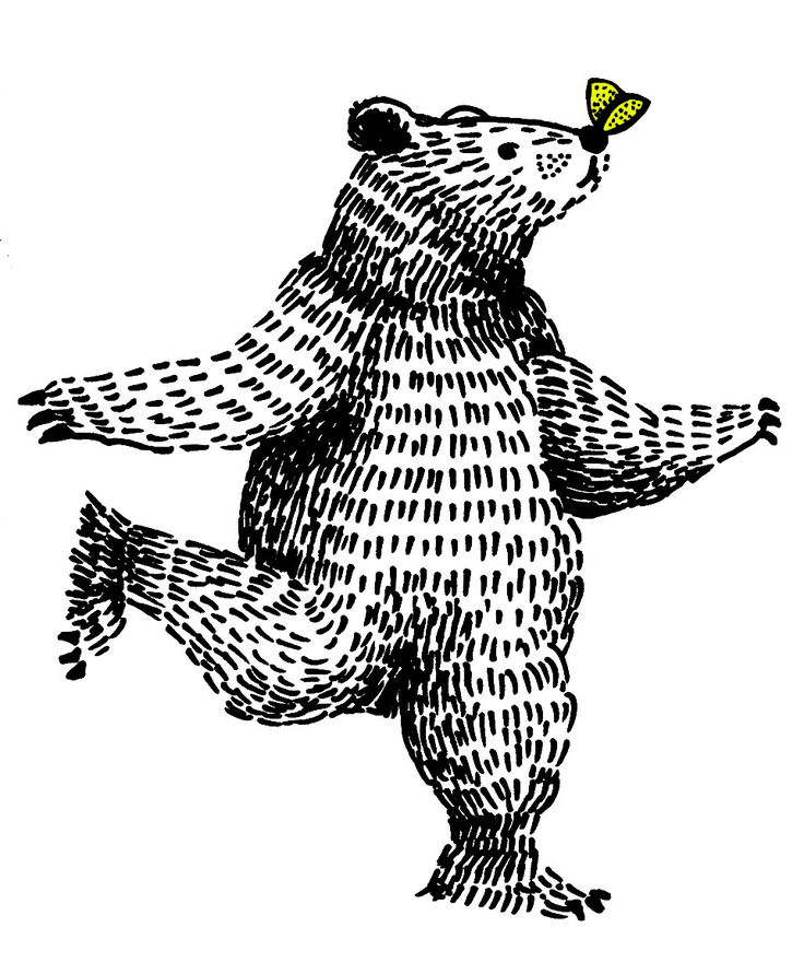bear butterfly illustrattion pen