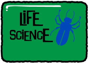 5E Lesson Planning!  Dozens of free high quality science lesson plans for elementary teachers.