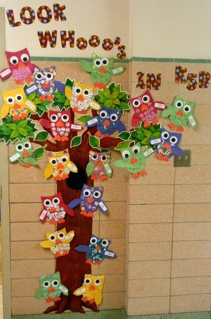 preschool classrooom ideas | added my owls to the outside wall. My students from…