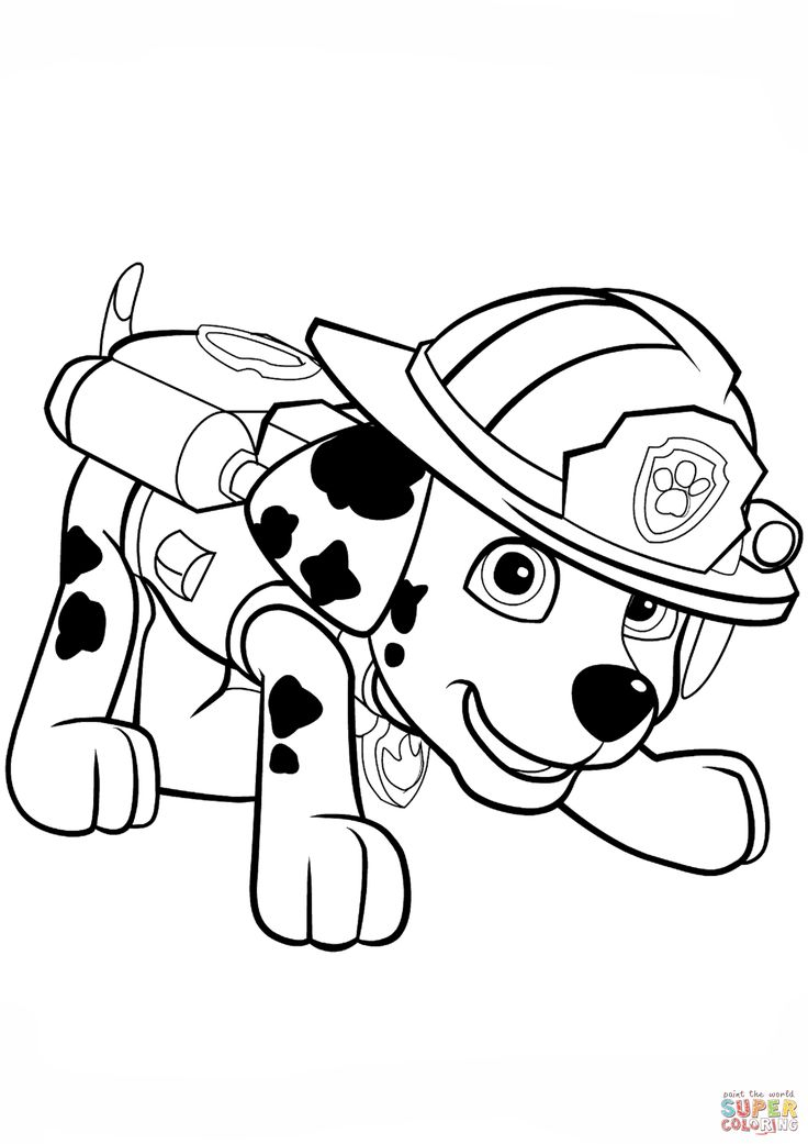 Marshall Paw Patrol Coloring Pages Printable Print Paw