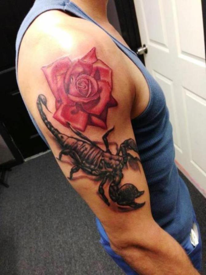 картинки тату скорпиона и цветка продюсера