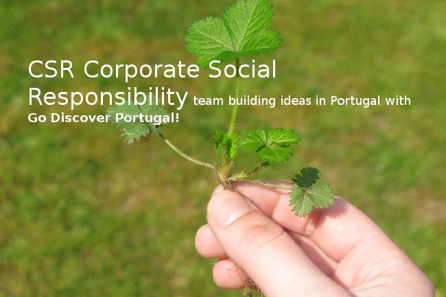 CSR corporate social responsibility, Environmental & Charity Team buildings in Portugal - Go Discover Portugal travel