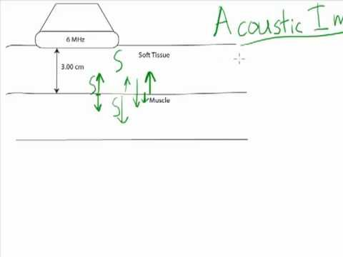 This video describes how to calculate acoustic impedance based on density and speed of propagation and describes some of the importance of acoustic impedance.