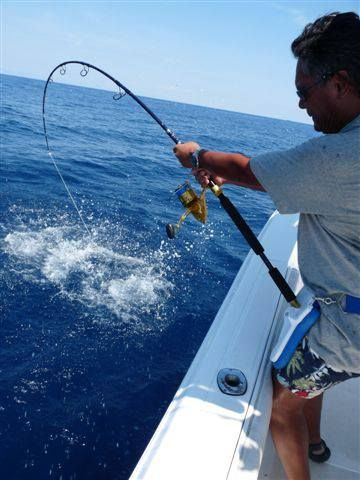1000 images about cts rods in action on pinterest for Fishing rod in spanish