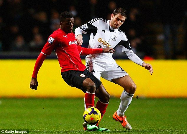 Swansea City Vs Cardiff City 8/2/14 - Watch Online Highlights - FootyShows