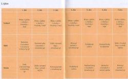 1. Týden Kniha Najezte se do štíhlosti - Antónie Mačingová - ke stažení zdarma - Obezita, diety - NEDOSTATKY MÉHO TĚLA