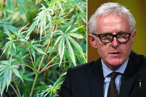 Legalise cannabis says Norman Lamb as Lib Dem leadership candidate declares 'war on drugs has failed' - Mirror Online
