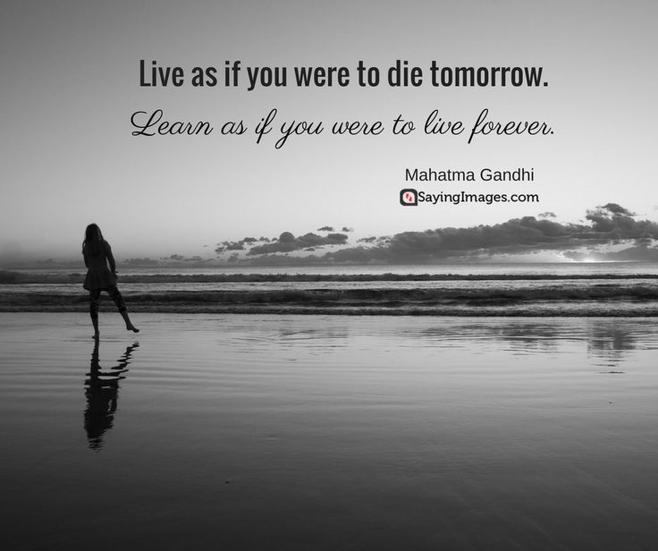 Best Quote Ever: 25+ Best Best Quotes Ever On Pinterest