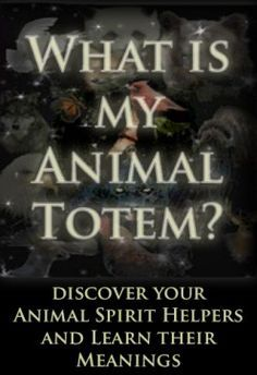 How to Discover Your Spirit Animals