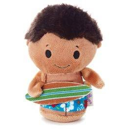 itty bittys® Surfer Boy SPECIAL EDITION Stuffed Animal,
