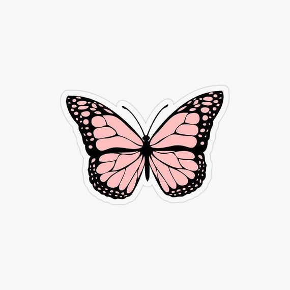 Visit For More Jennxpaige Backgrounds Bestbackgrounds The Post Jennxpaige Appe Butterfly Wallpaper Butterfly Wallpaper Iphone Aesthetic Iphone Wallpaper