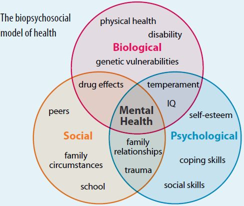 Social Workers Assessment Basics: Bio-Psycho-Social model of health