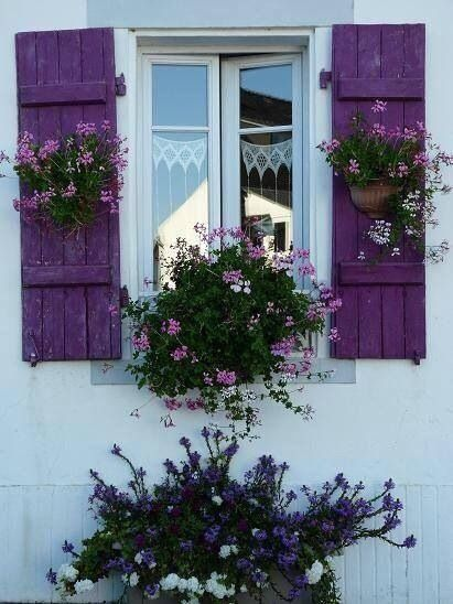 ~I See Beauty Around Me~ Love the purple shutters against white walls and the flowers.