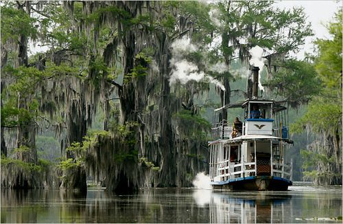Caddo Lake, On the boarder of Texas and Louisiana. A beautiful place to be before it get's too hot in the summer