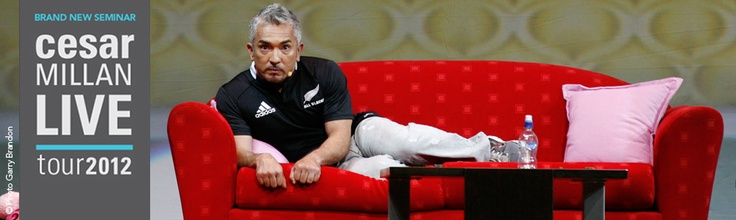 """Cesar Millan     Internationally renowned dog behaviour expert, author and star of the hit TV show """"Dog Whisperer with Cesar Millan"""" and """"El Líder de la Manada"""" in Spain, is returning to Europe with a BRAND NEW SEMINAR"""