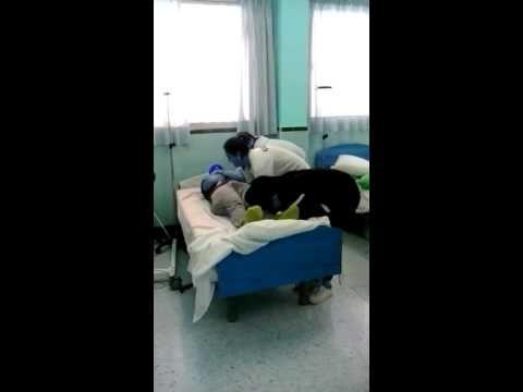 12. Pasar al usuario de la cama a la camilla sin entremetida (usuario dependiente) 3 técnicos