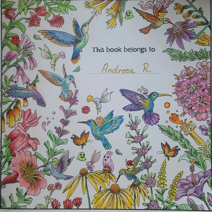 Animorphia adult  coloring book