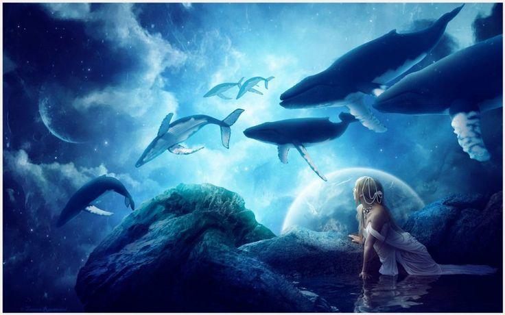 Whales Fantasy Wallpaper   whales fantasy wallpaper 1080p, whales fantasy wallpaper desktop, whales fantasy wallpaper hd, whales fantasy wallpaper iphone