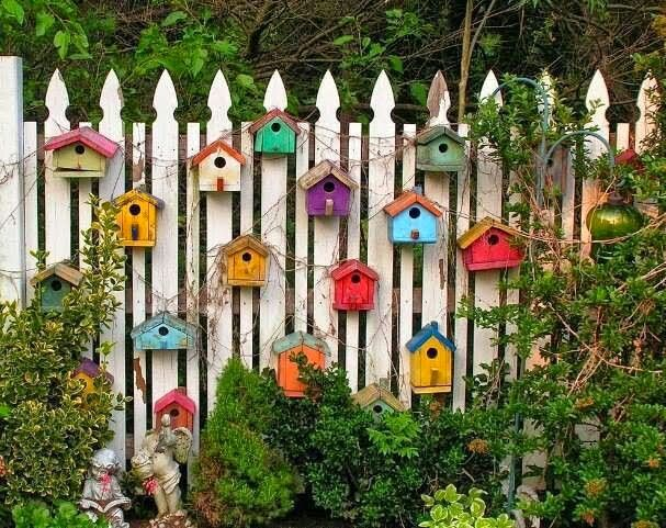 Colorful Bird Houses on Wooden Fence | Outdoor Areas