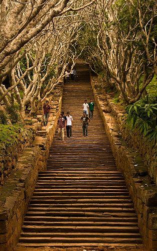 #38 Mihintale, Sri Lanka - The climb up