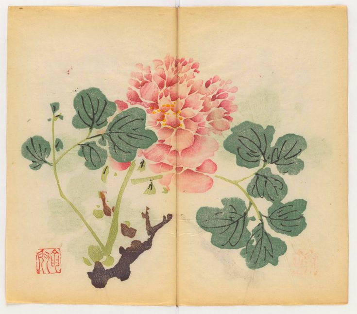 The World's Oldest Multicolored Printed Book Has Been Opened and Digitized for the First Time  http://www.thisiscolossal.com/2015/08/multicolor-printed-book-ten-bamboo-studio/