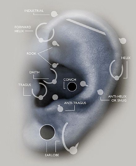 A Guide to Alternative Ear Piercings. I already have lobe piercings on both sides, I want to get either a second lobe or a helix on both sides for my birthday (that is, if mom says no to a nose piercing!).