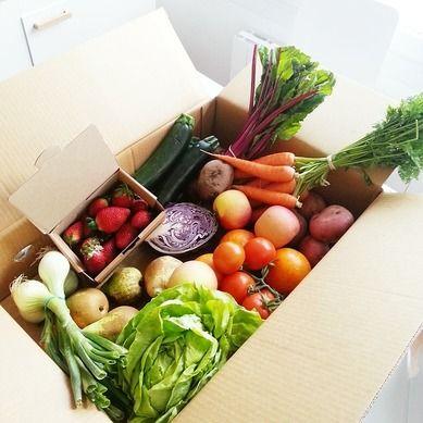 Kasvisruokavalio Oletko kasvissyöjä ja koet, että ruokavaliosi kaipaisi vähän päivitystä? Saatko ruokavaliostasi riittävästi kaloreita tai ravintoaineita? Pelkäätkö syöväsi liian paljon...