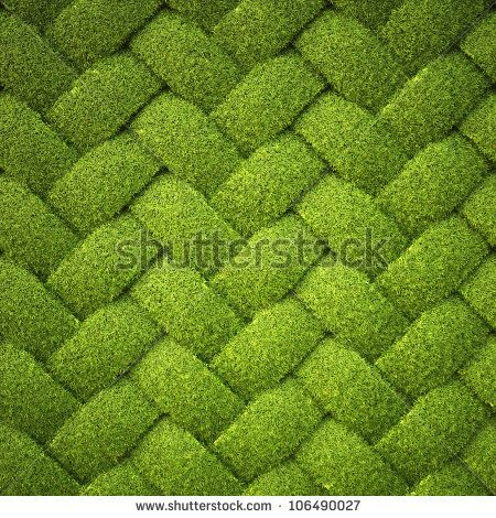 rattan from grass. background texture.