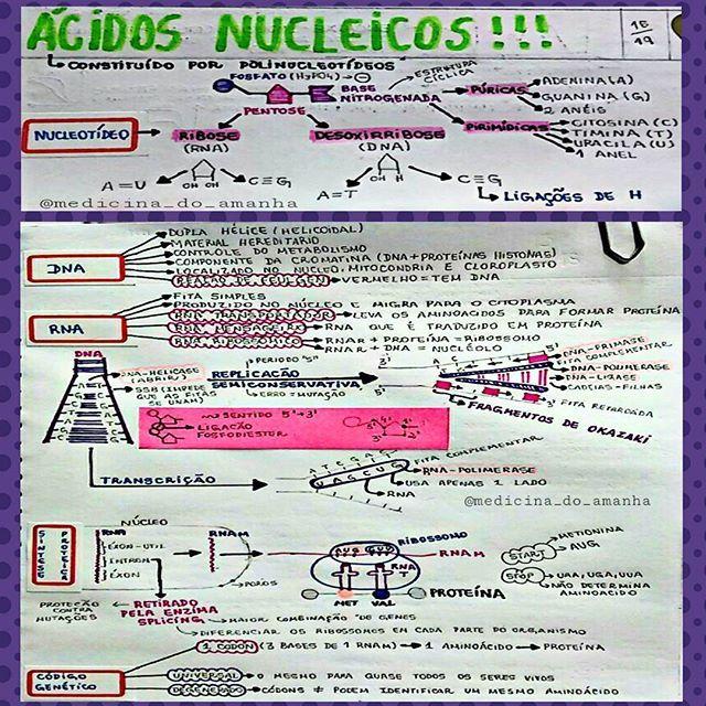 #RESUMO #BIOLOGIA #ÁCIDOSNUCLEICOS ❤❤❤ Também já está disponível para download no blog (RESUMOS ...
