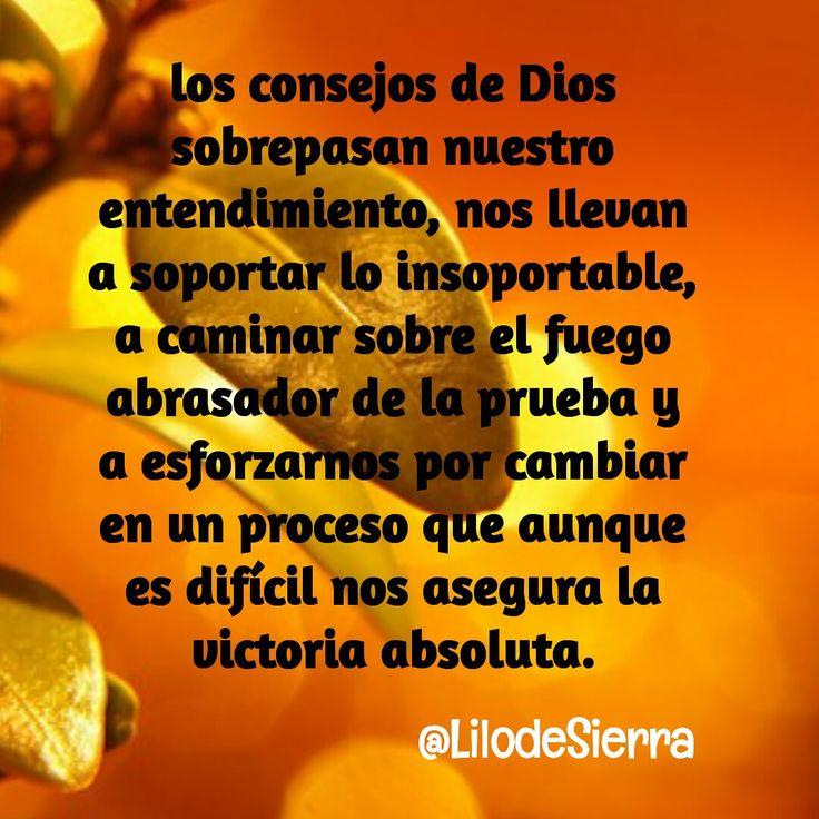 #Dios conoce lo que necesitamos, confía en El @LilodeSierra