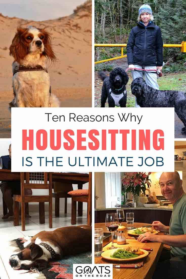 10 Reasons Why House Sitting Is The Ultimate Job World Travel Guide House Sitting Family Travel