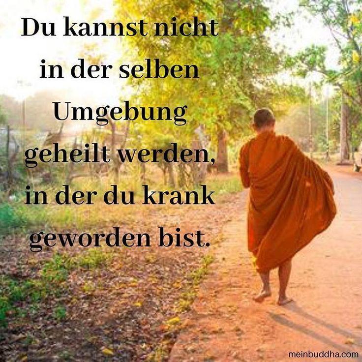 Spiritualitat Philosophie Buddhismus Glucklich Lockern In 2020 Buddhistische Spruche Weisheiten Spruche Lebensweisheiten Spruche