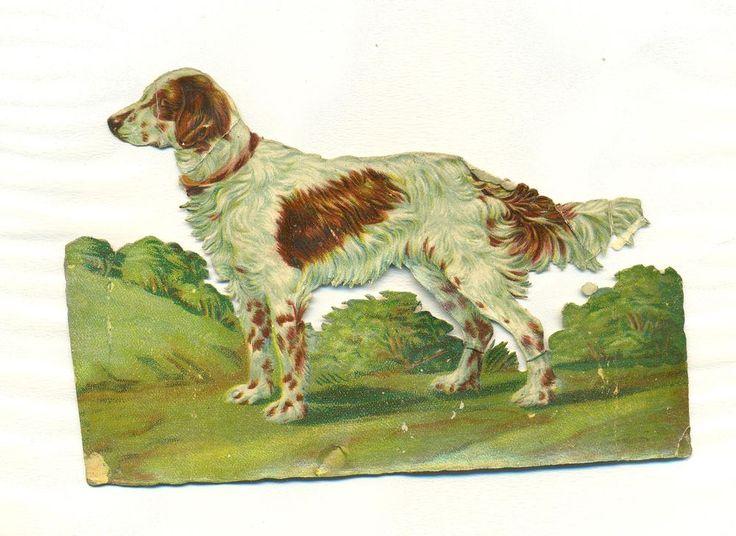 large victorian scrap dog