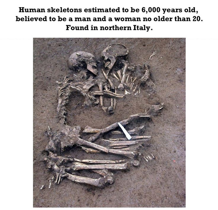 Human skeletons esitmated to be 6,000 years old, believed to be a man and a woman no older than 20yrs old. Found in Northern Italy