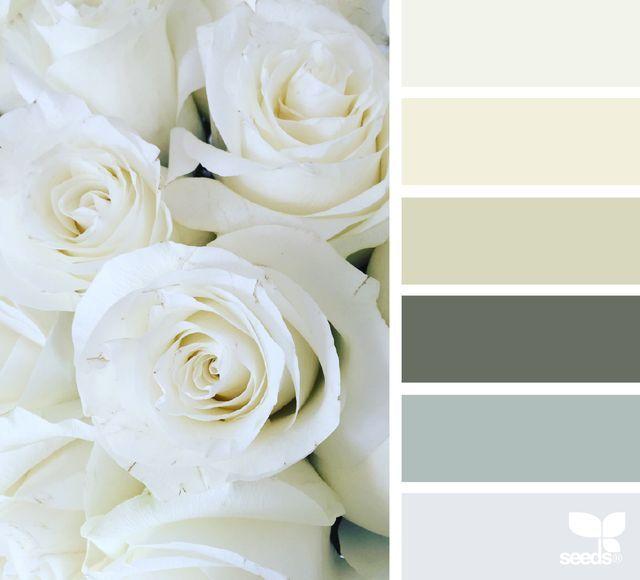 rose tones   design seeds   Bloglovin'