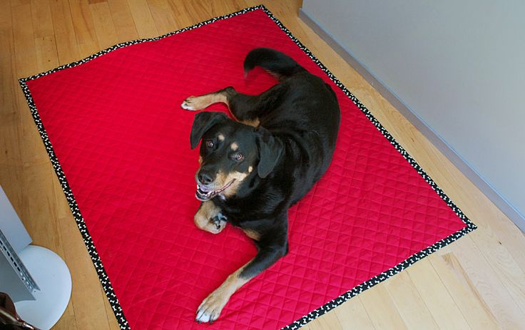 Easy Doggie Blanket: The trick in making this easy and cute dog blanket is buying pre-quilted diamond double-faced fabric (available in lots of colors) — that way it's already quilted and automatically reversible too.