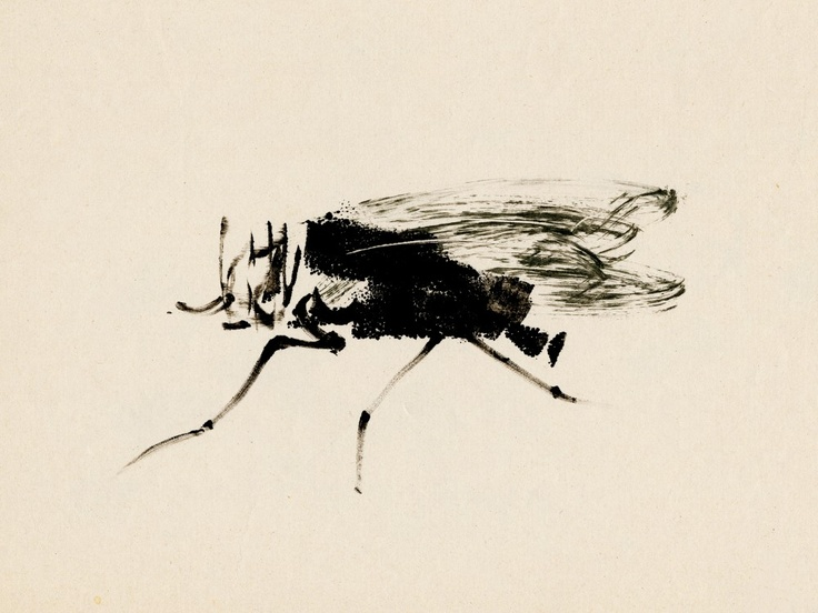 WPC-11-copie • Aurore de la morinerie