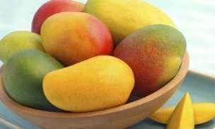 Buah Mangga http://mediatani.com/10-buah-buahan-sehat-kaya-manfaat-yang-mudah-ditemukan/