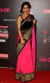 Sophie Choudry in sari at Annual Life OK Screen Awards 2014